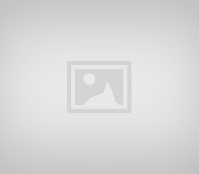 Ubud Village and Monkey Forest Tour