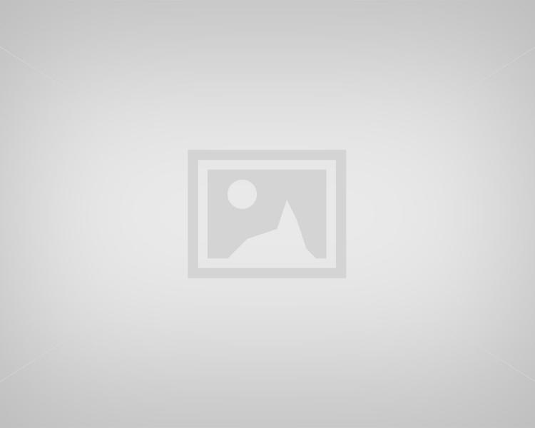 Best Ubud Tour: Tegalalang Rice Paddy Field Trip