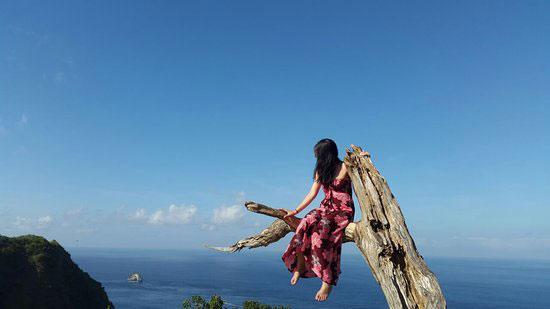 Tree Angel Nusa Penida